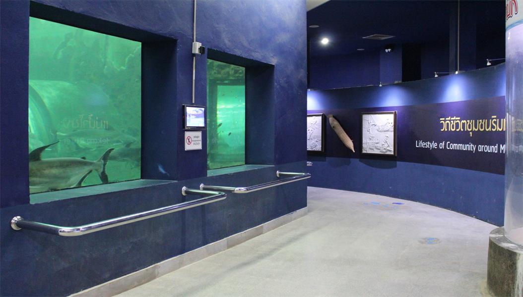 นิทรรศการสัตว์น้ำจืดที่หายากและหาได้ทั่วไปของแม่น้ำโขง