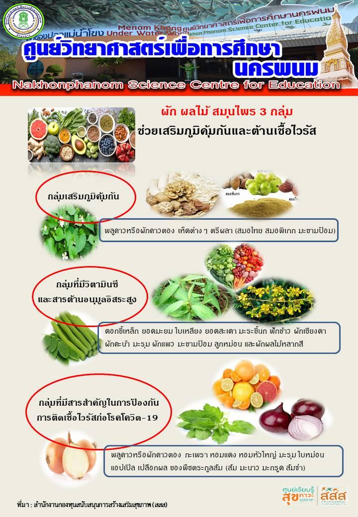 ผัก ผลไม้ สมุนไพรช่วยเสริมสร้างภูมิคุ้มกันและต้านเชื้อไวรัส